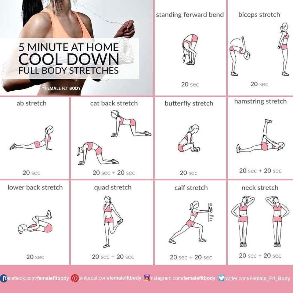 106 Likes 1 Comments Femalefitbody Femalefitbody On Instagram 5min Cool Down F Full Body Stretching Routine Full Body Stretch After Workout Stretches
