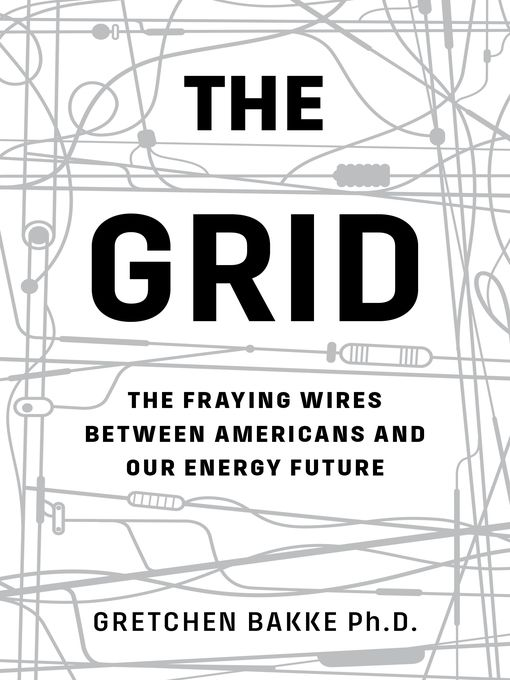 The Grid The Fraying Wires Between Americans and Our