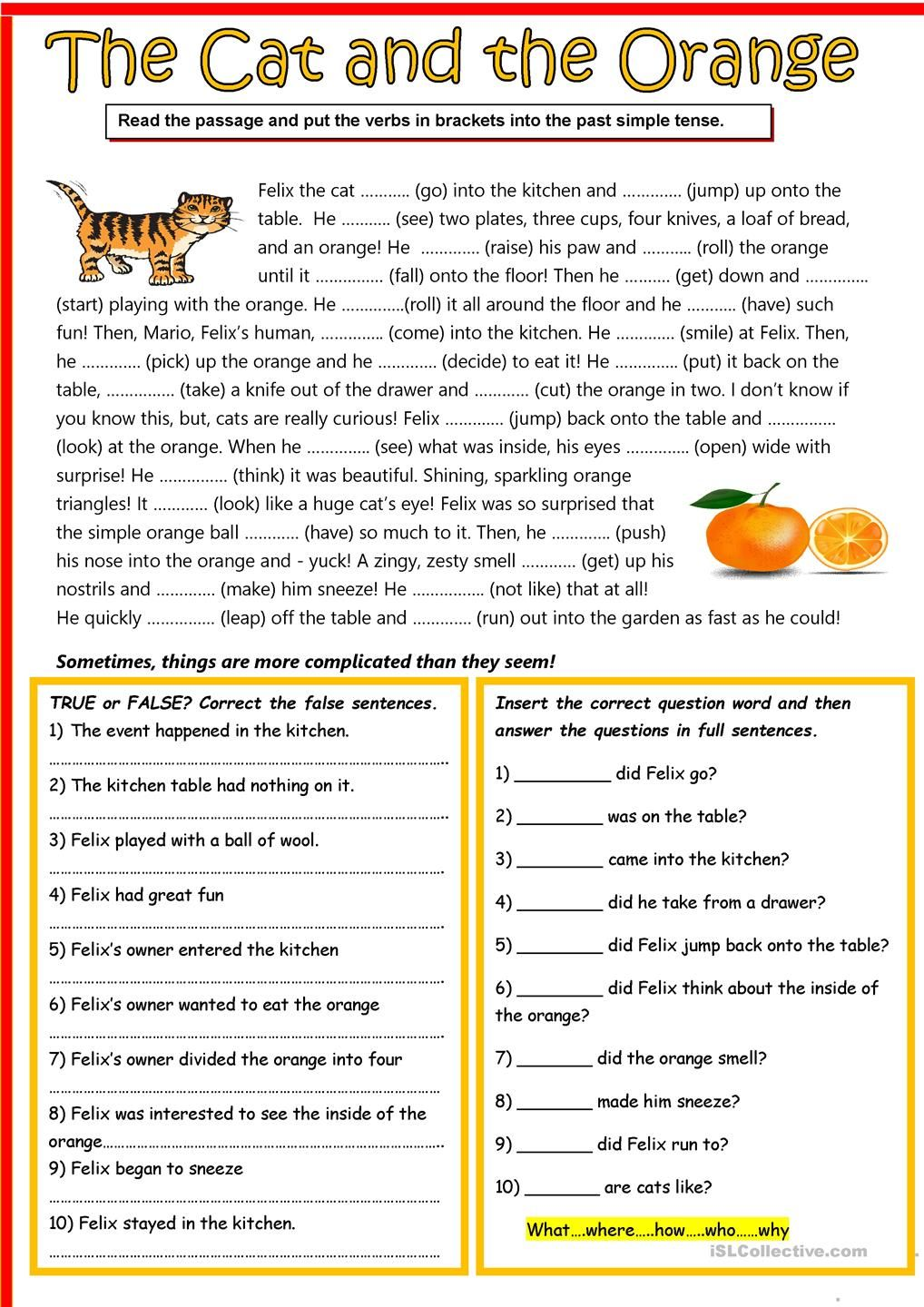 The Cat And The Orange Reading Comprehension Lessons Reading Comprehension Reading Comprehension Worksheets [ 1440 x 1018 Pixel ]