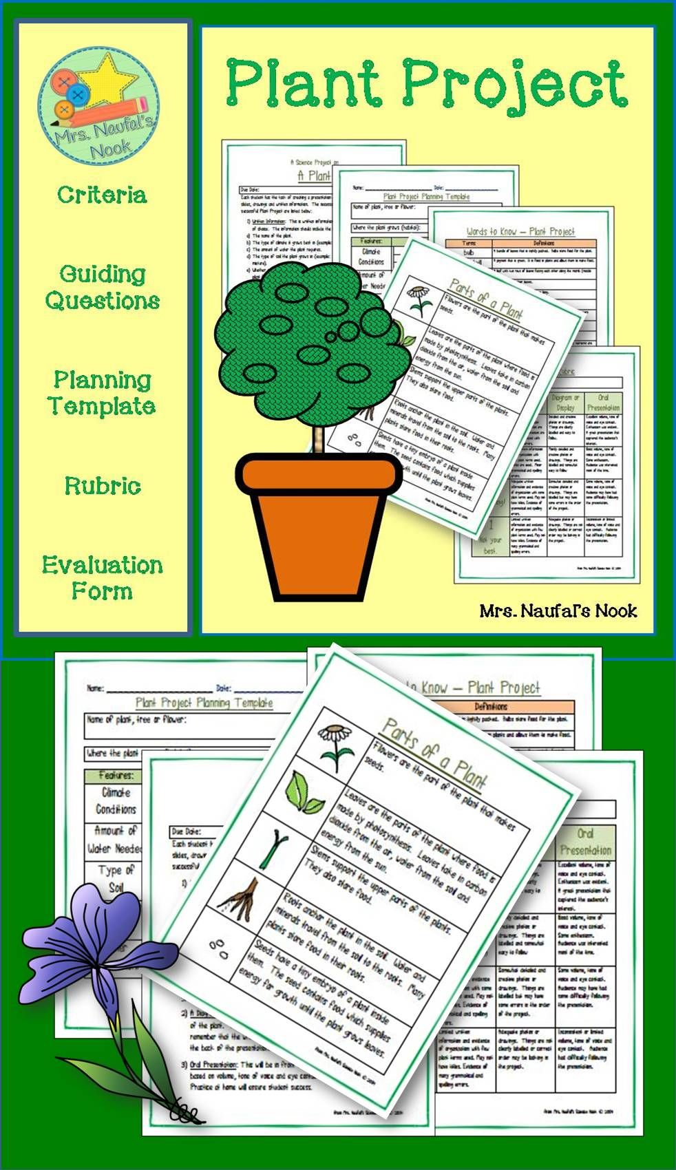 Plants Rubrics for projects, Plant projects, Rubrics