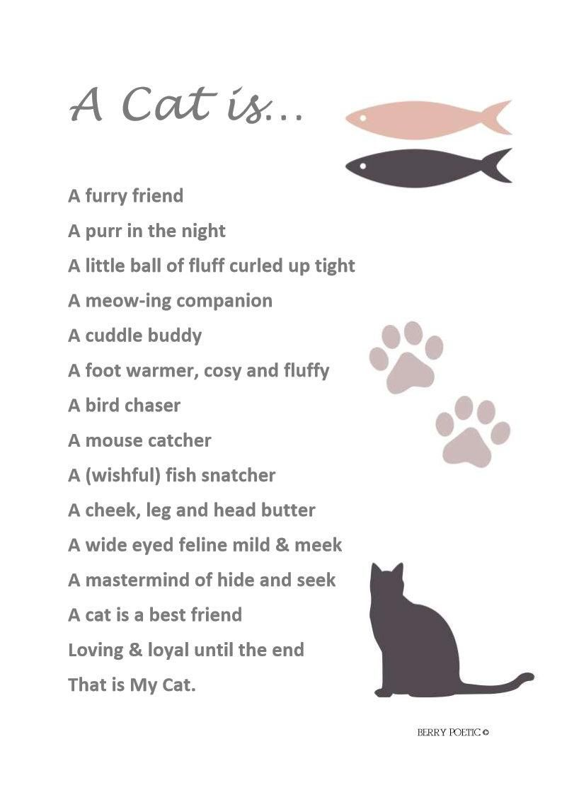A Cat Is Poem Cat Poem Cat Gift Cat Lover Cat Print Etsy In 2021 Cat Poems Pet Poems Cat Gifts