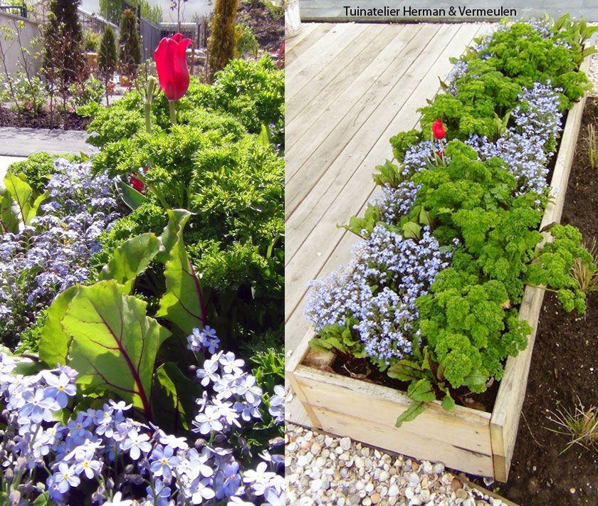 Een stoere eikenhouten bak met bloemen kruiden en groenten langs het terras zorgt voor een - Terras beschut ...