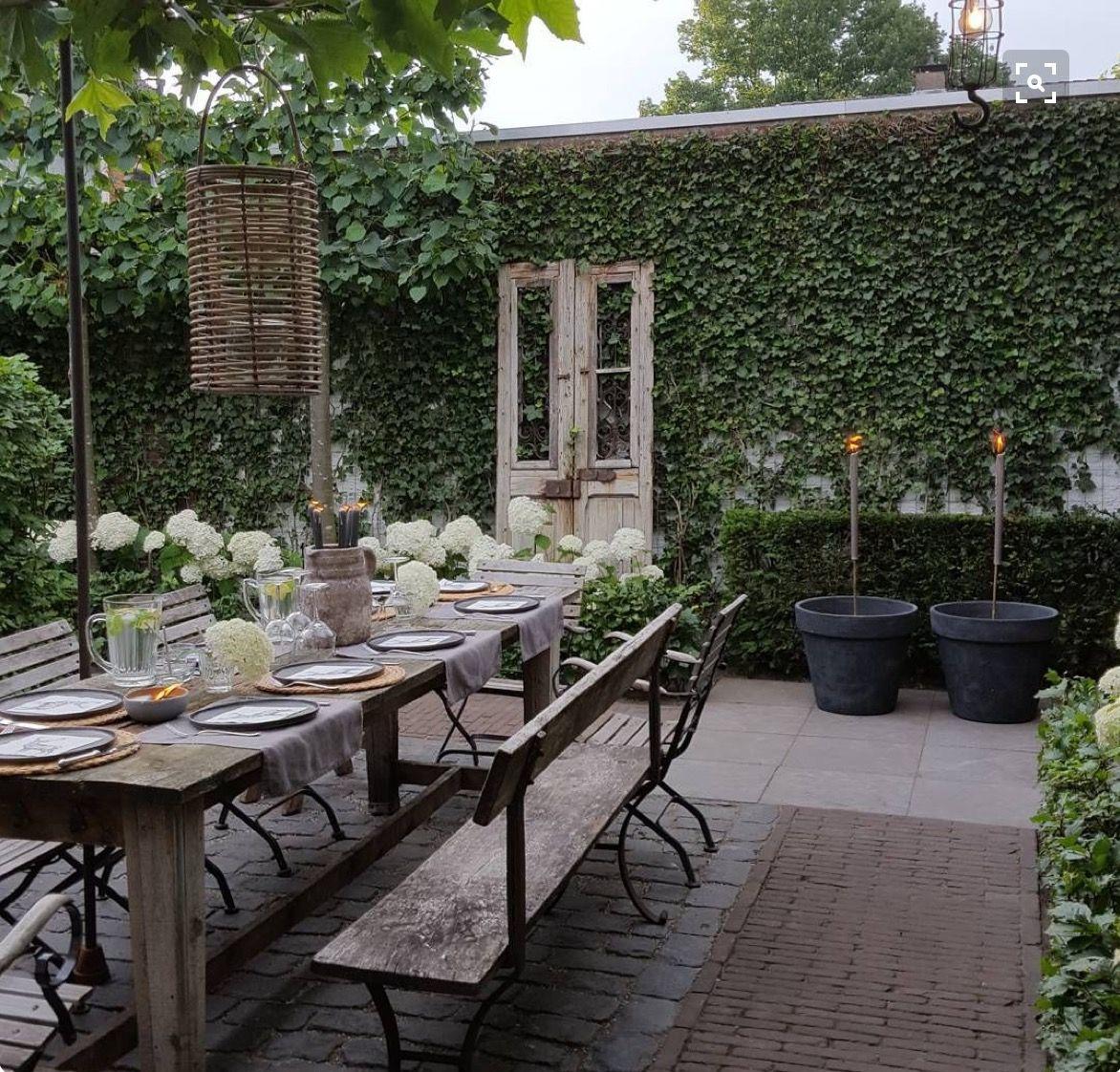 Garten Terrasse: Pin By Elmien Orchard On Garden