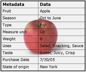 Metadata simplified #metadata #chart   Metadata 101 in ...
