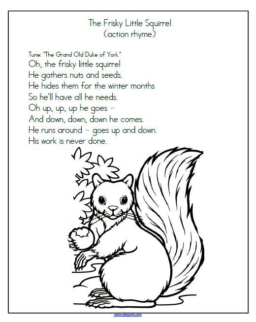 Frisky Little Squirrel Song Follow Link For More Free Printable