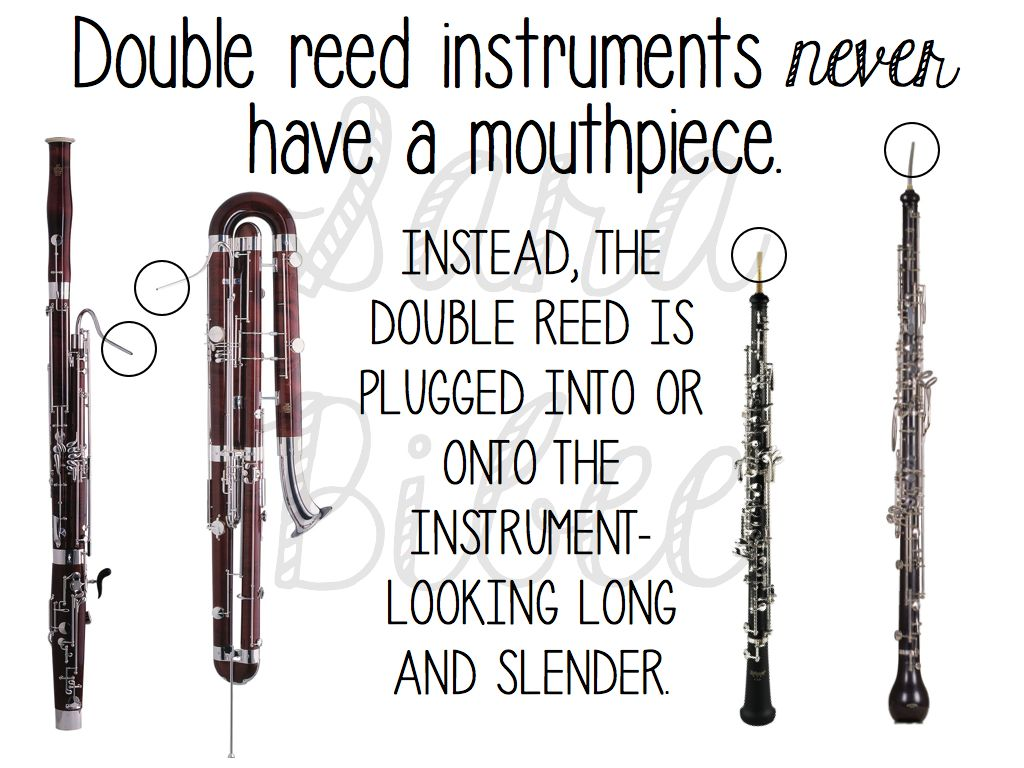 The Ultimate Guide To Woodwind Instruments In The General
