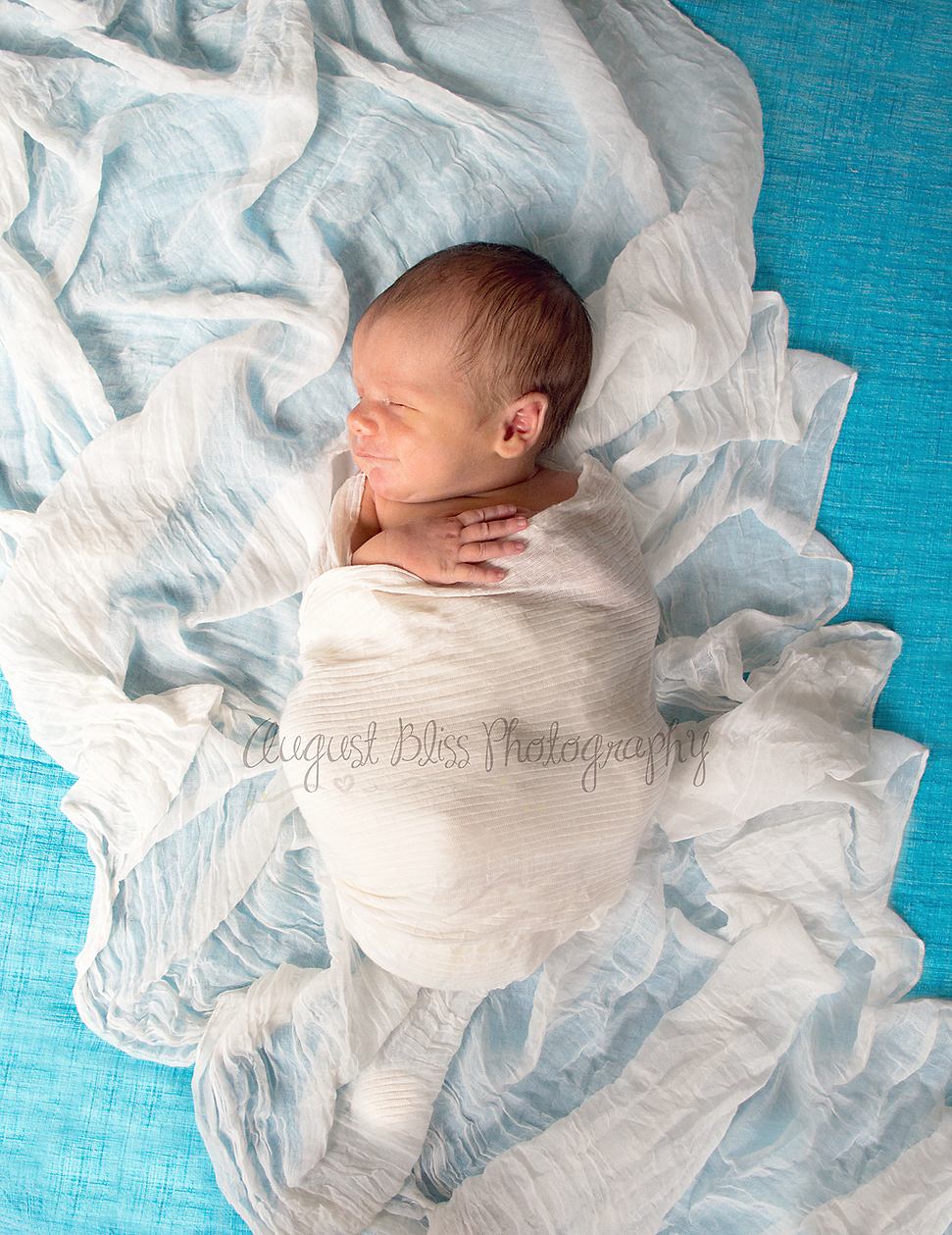 August bliss photography lebanon tennessee babies