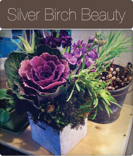 Love this natural design of kale, stock and other greens in the silver birch Blumebox!