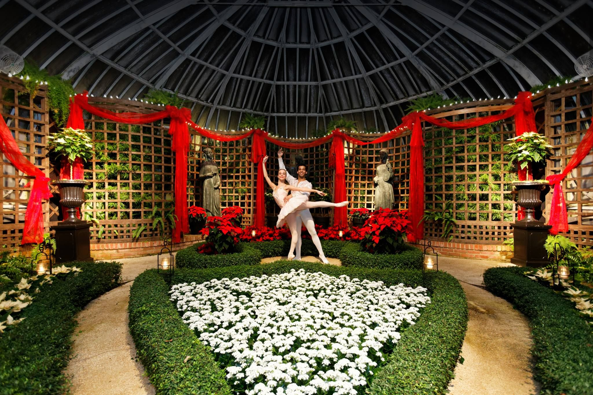 Poinsettias and Pointe Shoes at Phipps Conservatory is always a ...