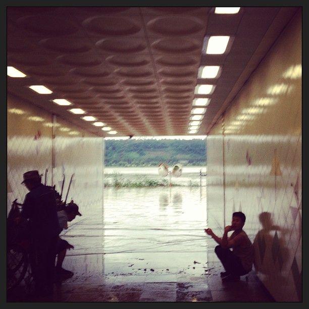 .@Jinsub Shin | 오랜만에 비가그쳐 부푼마음을 안고 자전거를 타고 한강을 향하였으나... #dayum #... | Webstagram