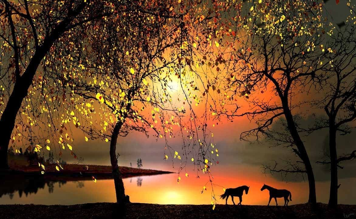 The 100 Most Beautiful Songs Of All Time Best Songs Beautiful Nature Nature Pictures Beautiful Sunset