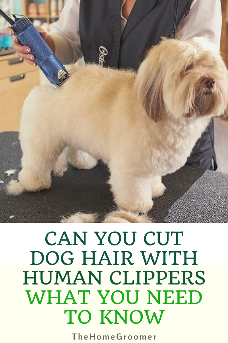 Pin On Grooming Tips Guides