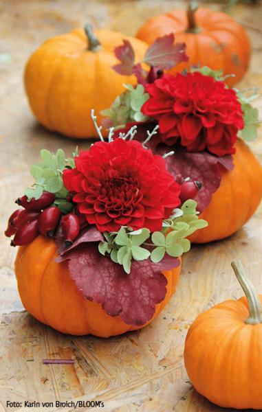 DIY Tischdeko für die Herbsttafel! Hol' die Schätze aus dem Garten, jetzt wird gebastelt mit Kürbis und Herbstblumen. #herbstlichetischdeko