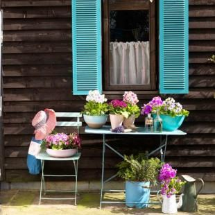 Belle Inspirations: CREATIVE GARDENING! Love the shutters.