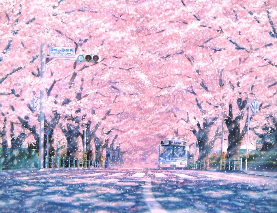 My love, my sakura Cenário anime, Ilustração de paisagem