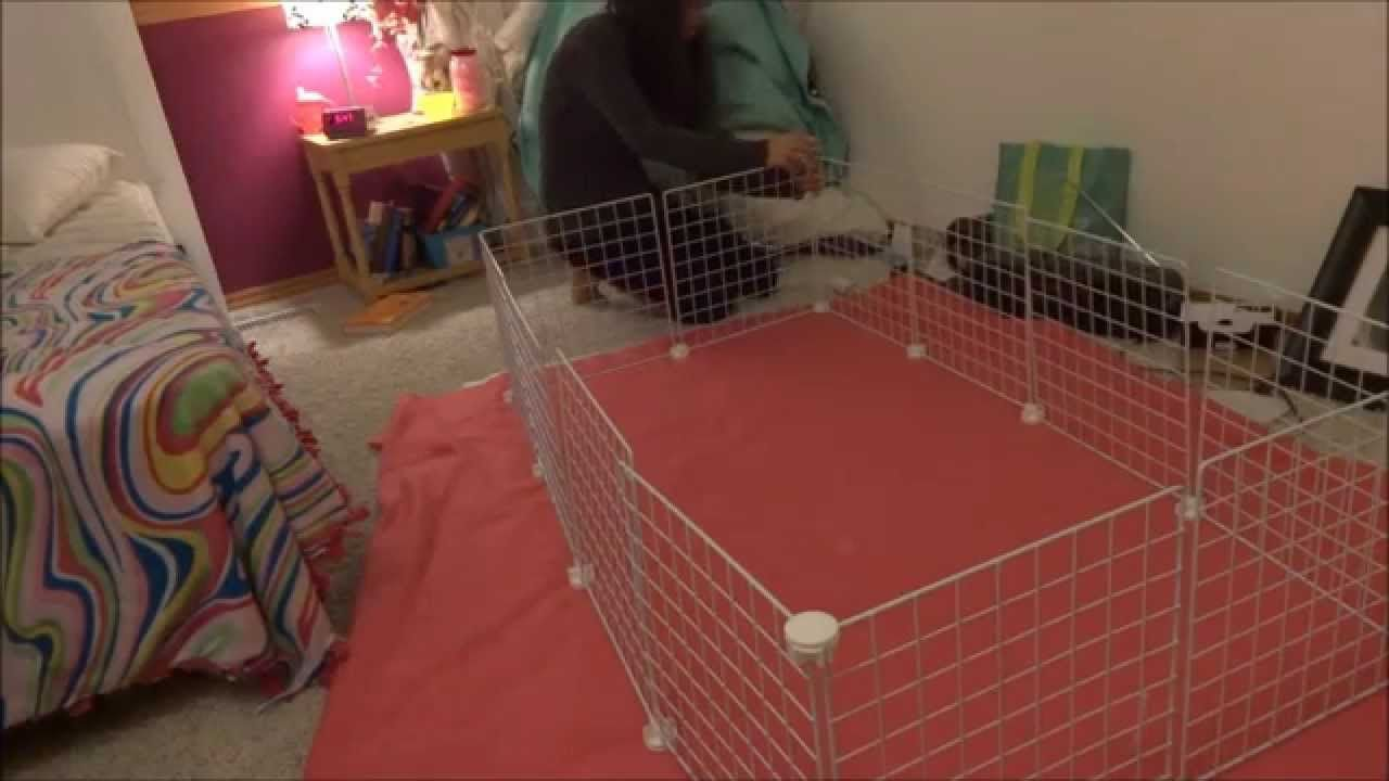 How To Make A C C Cage With A Shower Curtain Youtube C C Cage