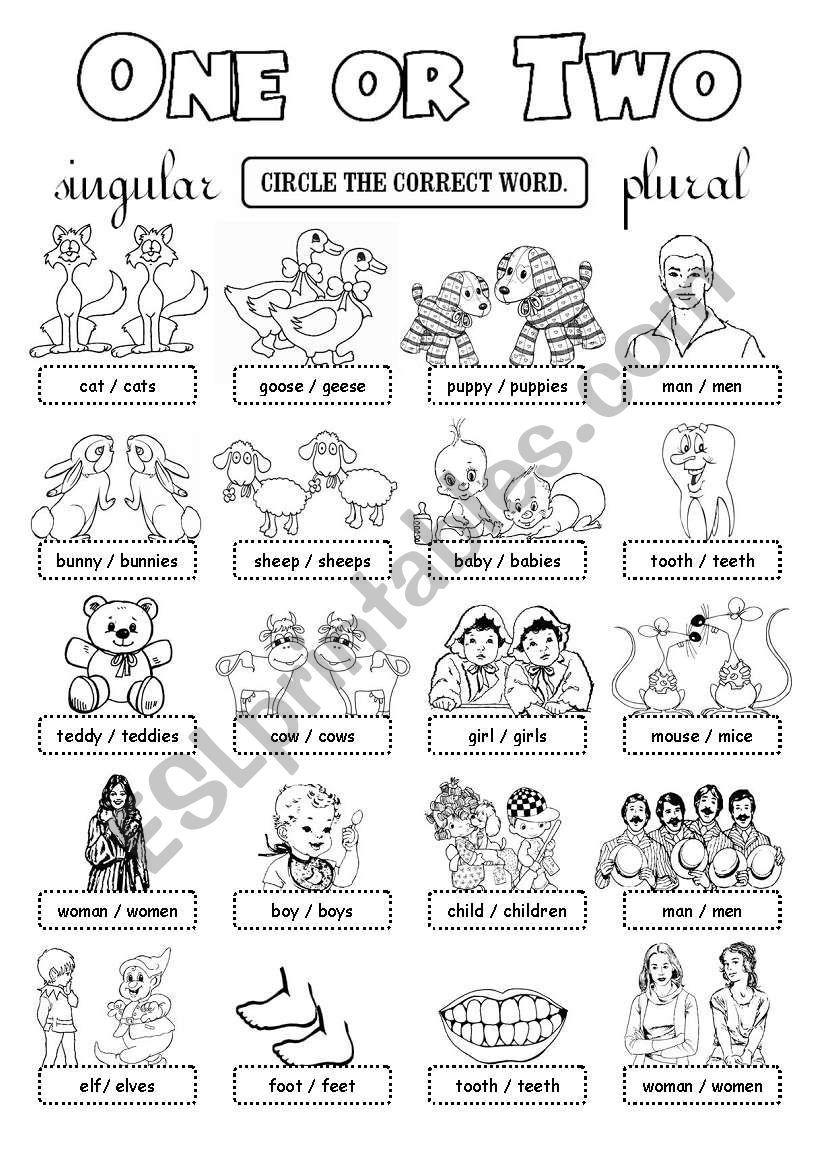 Choose The Right Word Singular Or Plural Enjoy Plurals Grammar Worksheets English Language Learning [ 1169 x 821 Pixel ]