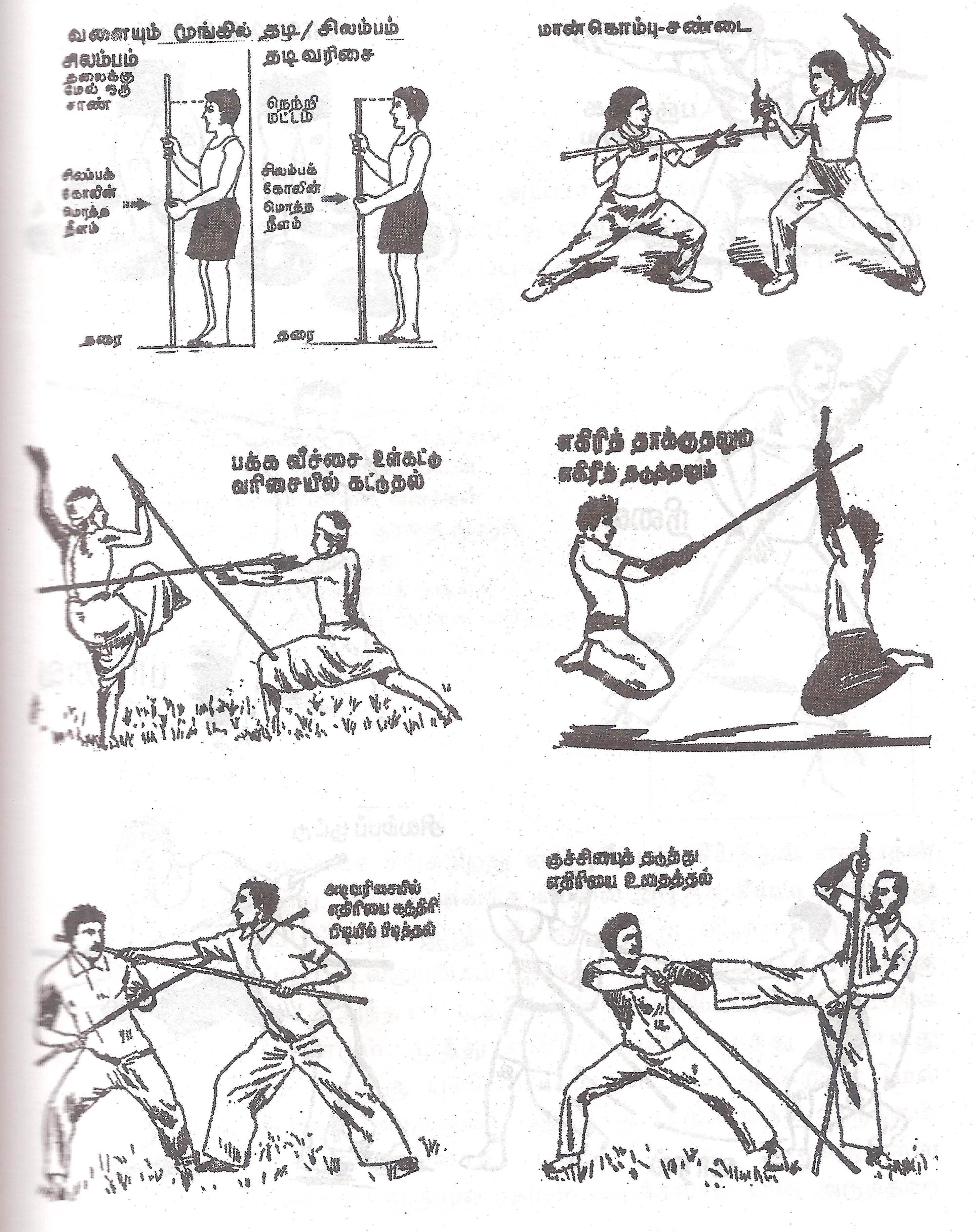 Fighting Postures