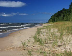 Illinois Beach Nature Preserve Natural Park Nature State Parks
