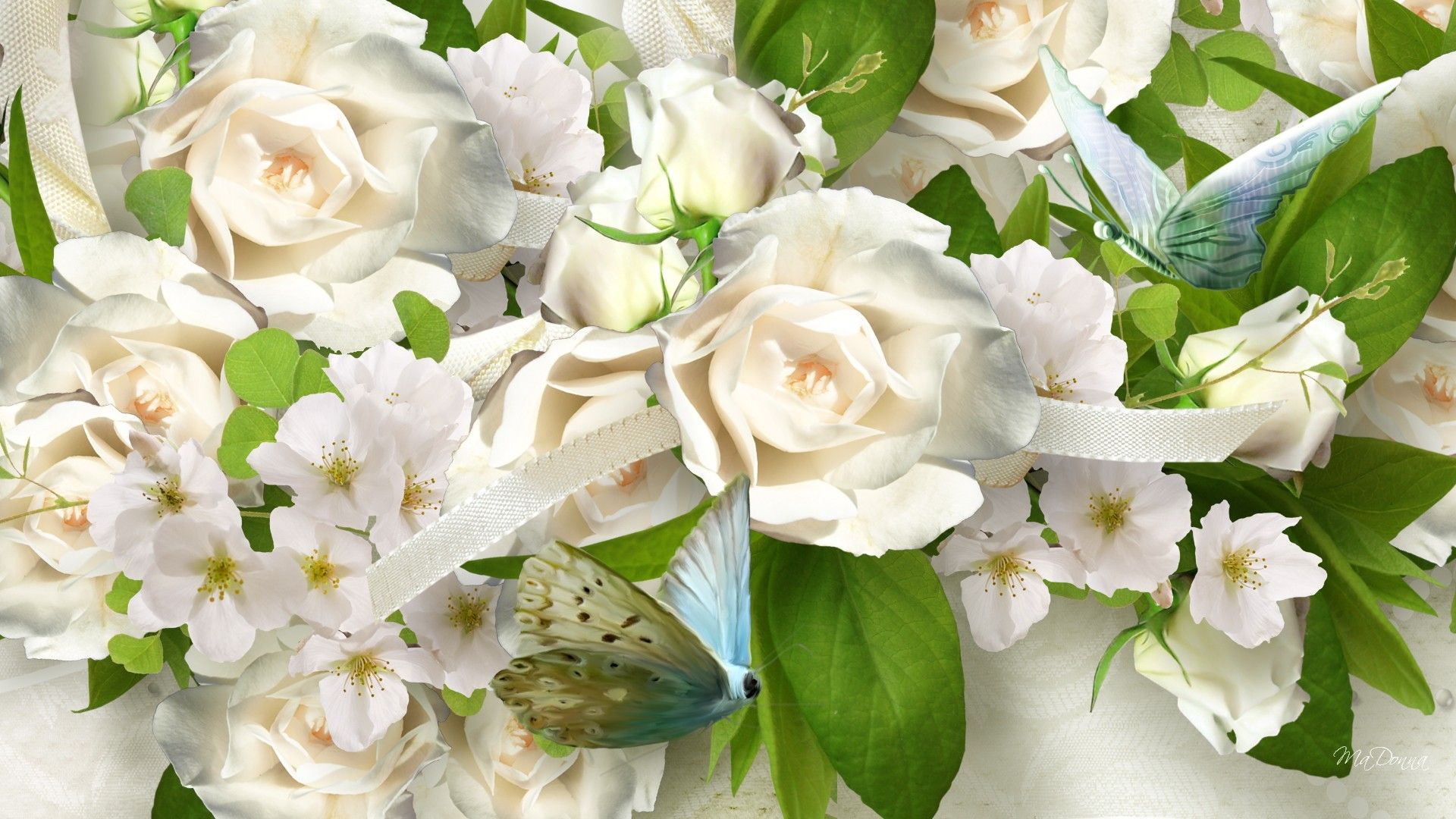 White Roses And Butterflies Bouquet Roses Pinterest