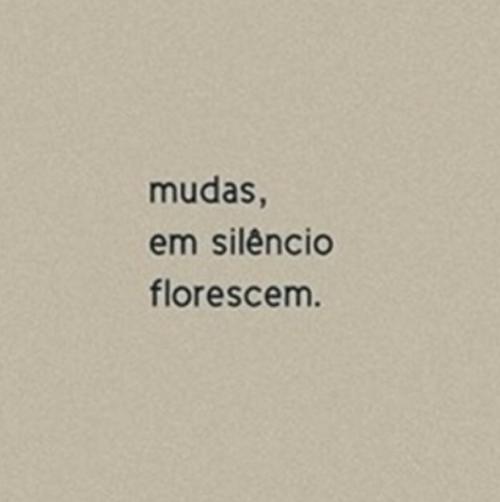 Mudas Em Silêncio Florescem Frases Citações Slides