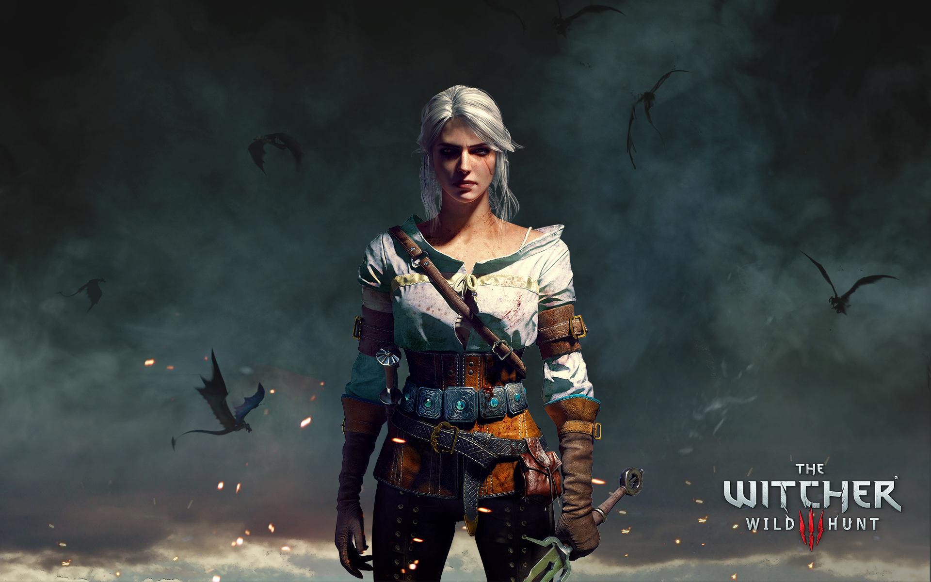 Ciri Wallpaper The Witcher Wild Hunt The Witcher The Witcher 3