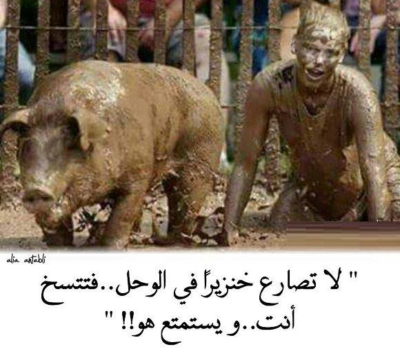 فتتسخ انت ويستمتع هو Mud Fight Blog Pictures Men Are Pigs