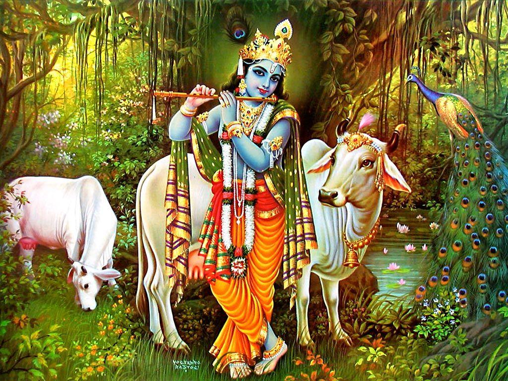 lord krishna image