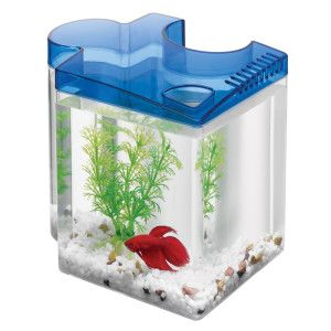 Aqueon 0 5 gallon puzzle betta aquarium aquariums for Betta fish tanks petsmart