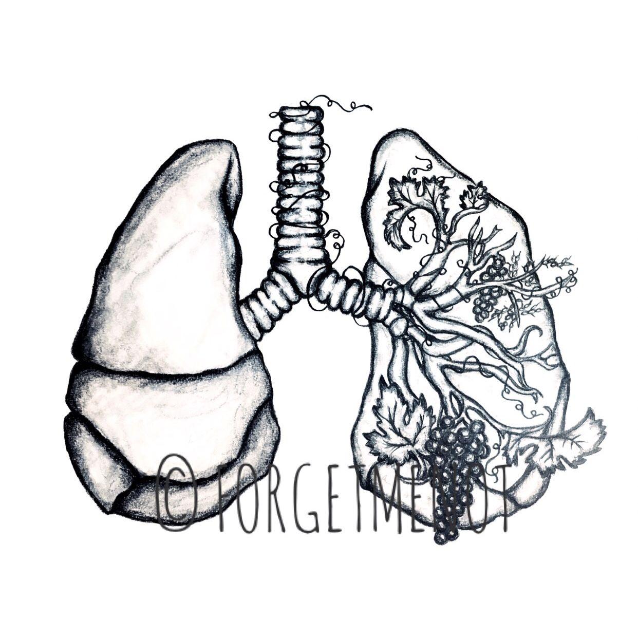 Drawing Art, Anatomical Art, Anatomy Art, Flower Art, Lung, Lung Art ...