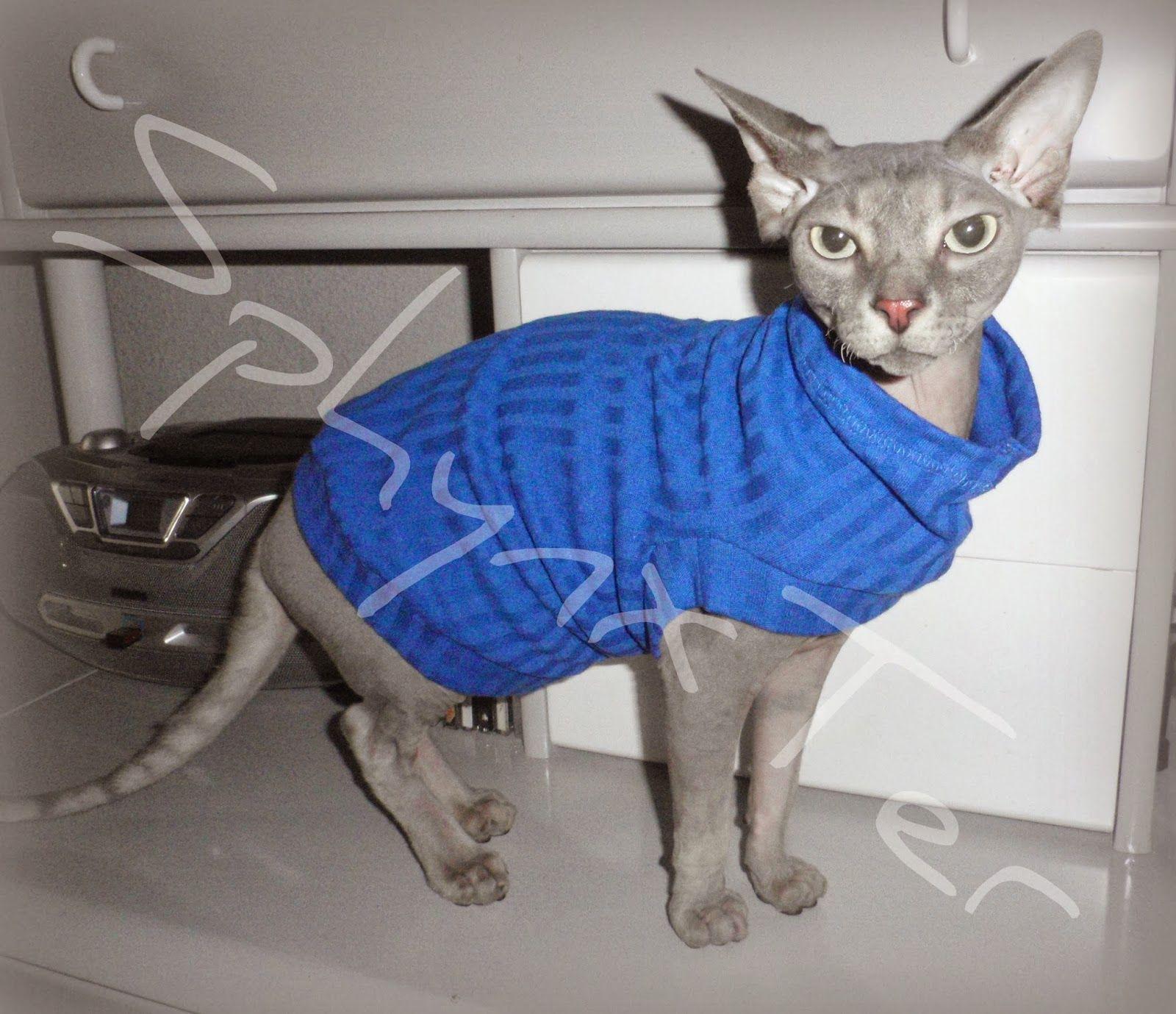 Ropa para gatos sin pelo o los sphynx u otros con poco pelo