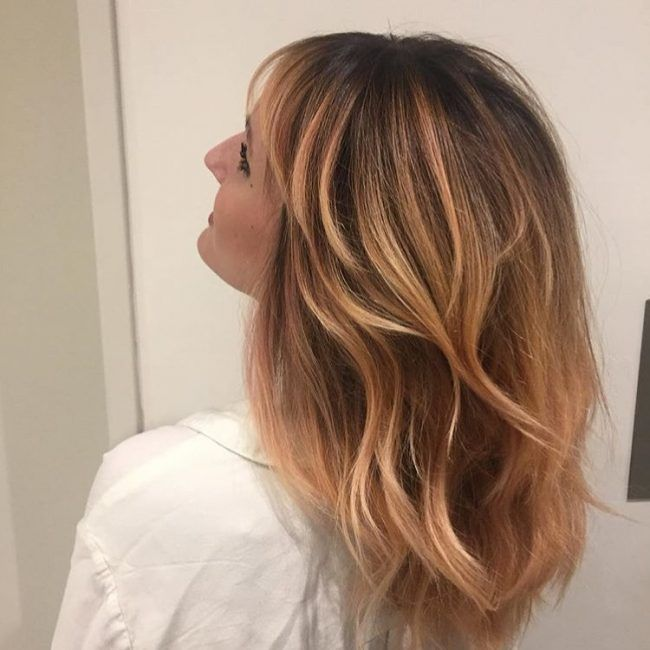 Strawberry Blonde Highlights With Balayage Ombre Hair And Makeup
