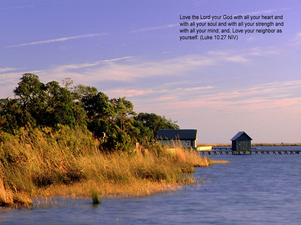 BIBLE STORIES ARE TRUE: DAILY SCRIPTURES & PRAISE, 11/10/14, LOVE THE LORD WITH ALL OF YOUR HEART & SOUL!