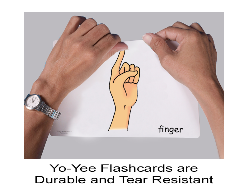 Body Parts for Children | Body Parts Flashcards for Young Learners ...