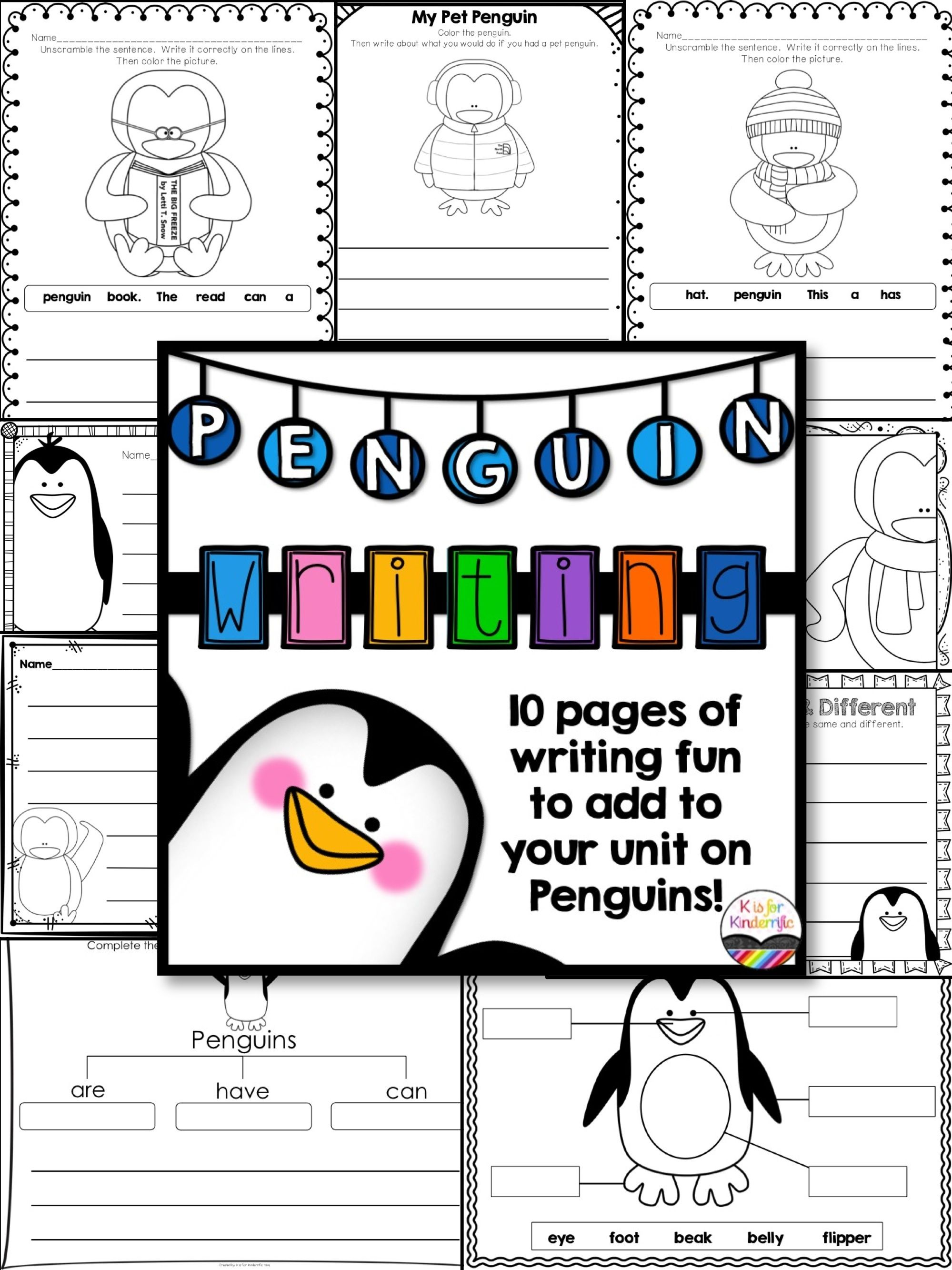 Essay on Penguins – Birds that Cannot Fly