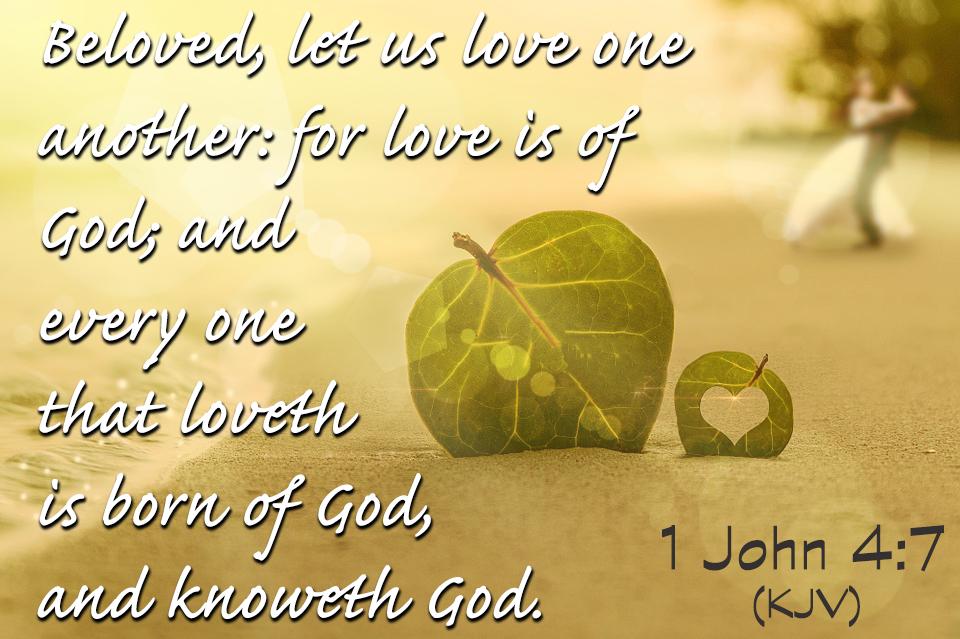 Image result for Beloved let us love one another kjv