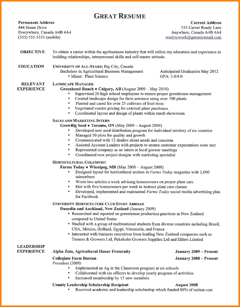 Building A Great Resume Custom Best Resume Samplest Examples Inspire You How Make The Resumes
