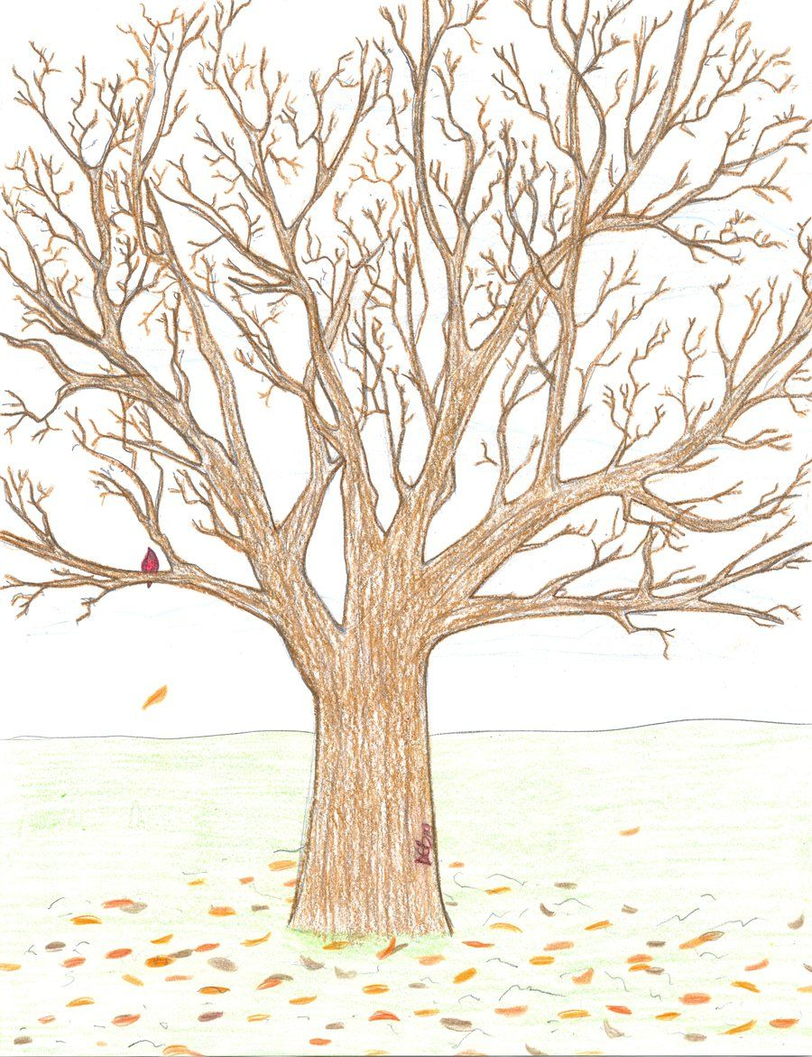 Tree Drawings realistic tree drawing | first realistic treesongbreez