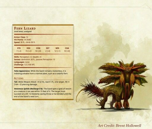 Fern Lizard Jungle Or Forest Setting Dungeons And Dragons Homebrew Dungeons And Dragons D D Dungeons And Dragons