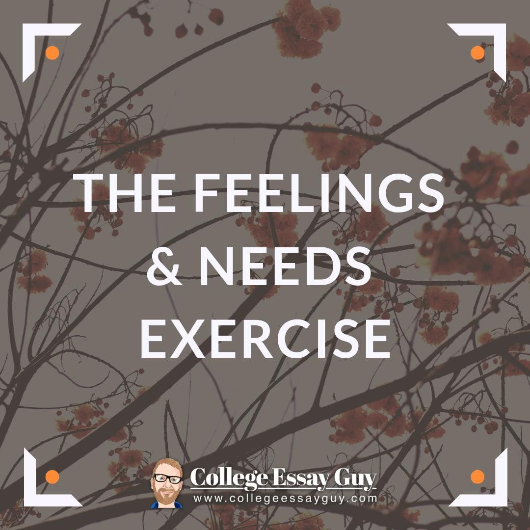 feelings and need exercise - college essay guy