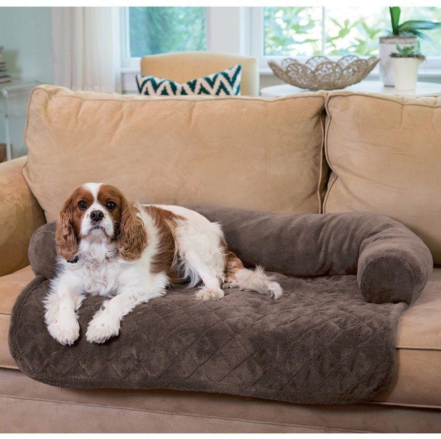 Dog Blankets For Furniture