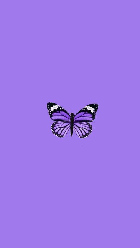 Puprple Aesthetic violet lucu kupu-kupu wallpaper kunci ...