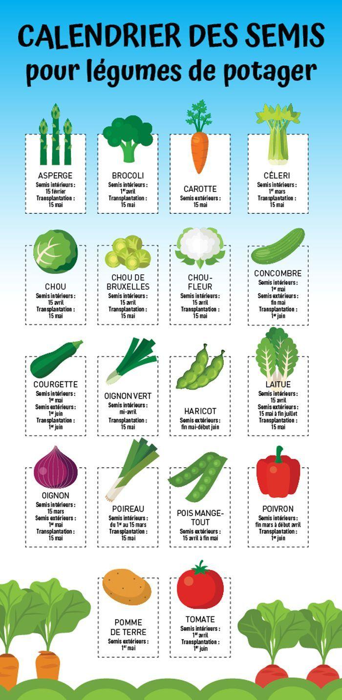 18+ Au jardin potager en avril inspirations