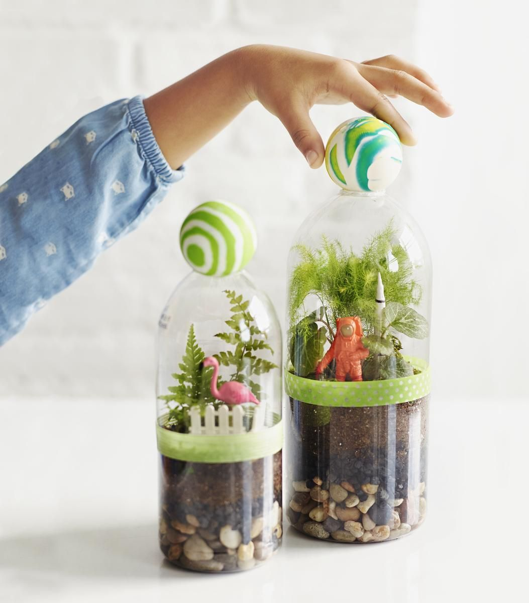 How To Make A Terrarium