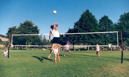 Best Outdoor Volleyball Net Systems Cobra Volleyball Outdoor Volleyball Net Volleyball Net Volleyball Court Backyard
