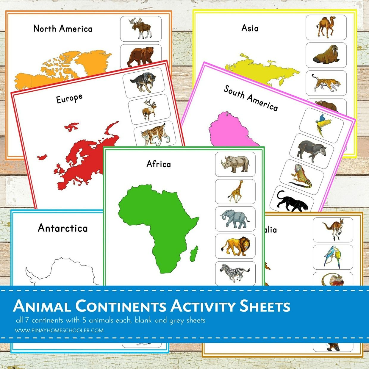Montessori Animal Continents Activity Sheets In