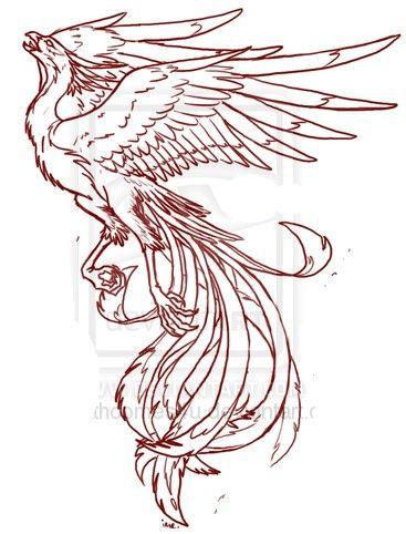 Phoenix tattoo idea | Shoulder or ribs Tattoo ideas | Pinterest ...