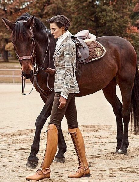 ☪pinterest Frenchfangirl ☼ Ꭰressage Queen Equestrian