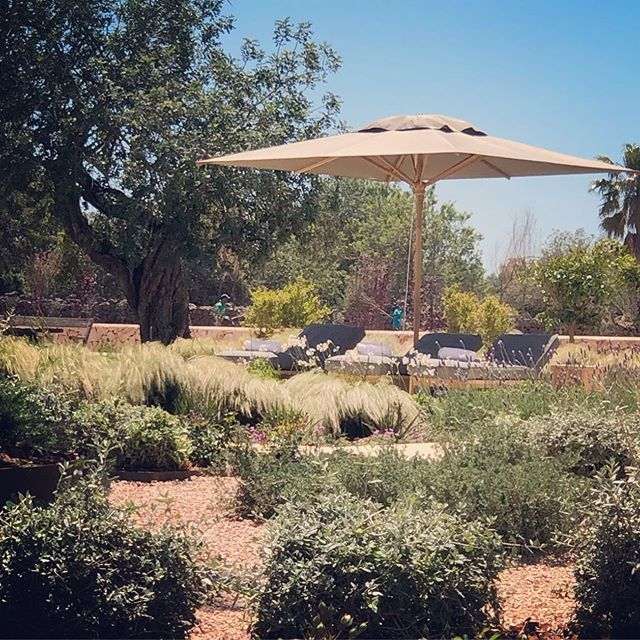 Sombra Shade . . #landscape #design #mallorca #garden # ...