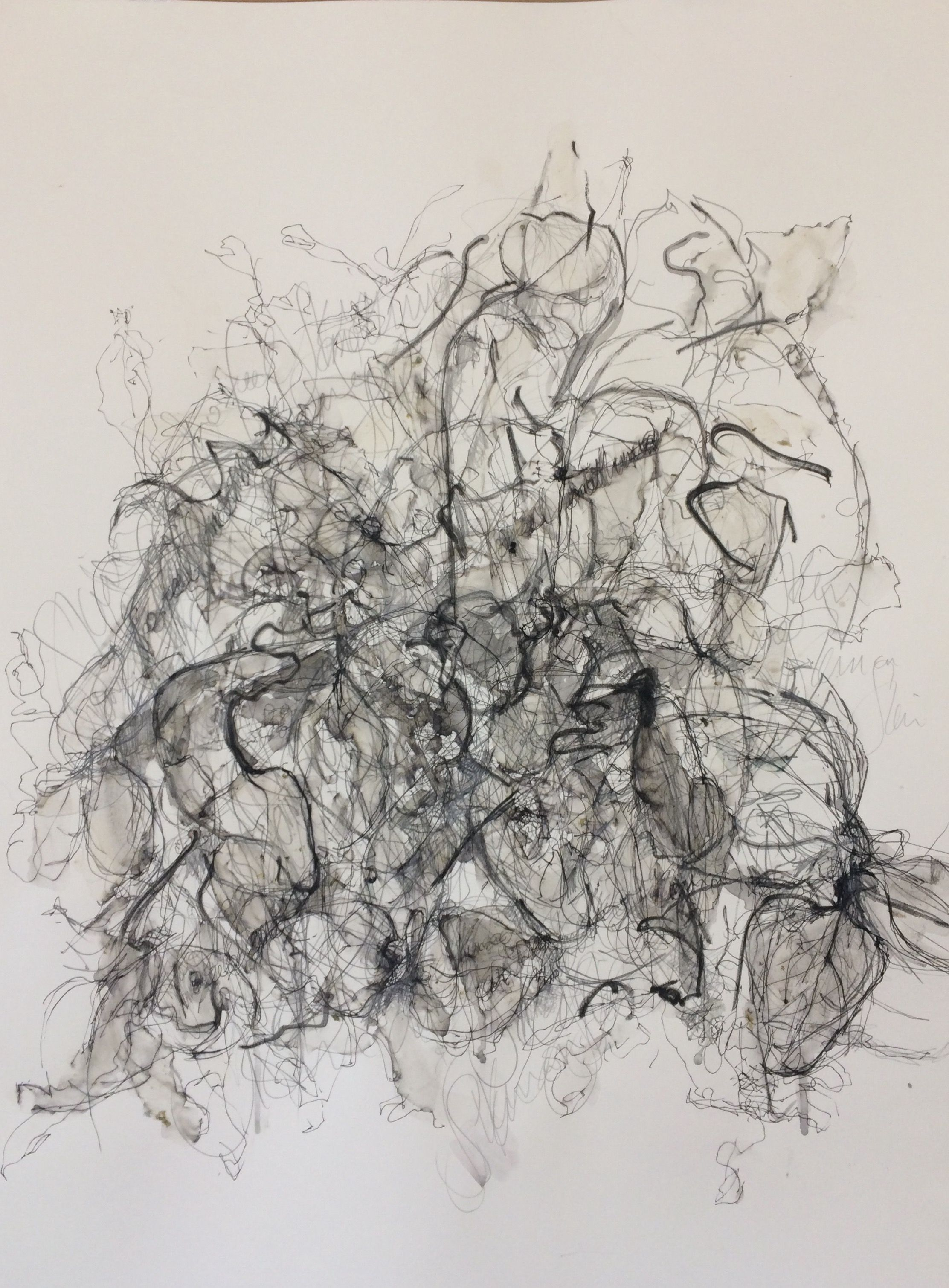 Fiona donald haptic drawing pencil ink plant pigment